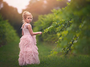 Фото Девочки Платье ребёнок