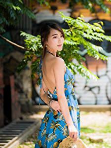 Фото Азиатка Боке Платье Спина Шатенка молодая женщина