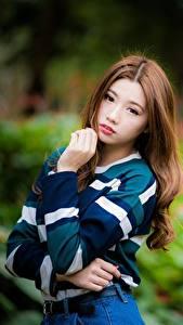 Картинки Азиатки Боке Шатенки Взгляд Рука Поза Девушки