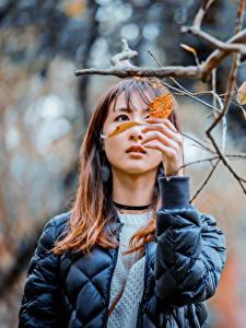 Фотография Азиатка Размытый фон Ветка Листва Куртка Руки Шатенки молодые женщины