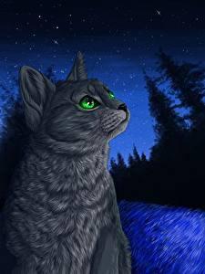 Обои Коты Рисованные Ночные Животные