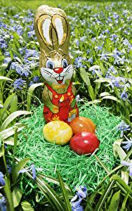 Обои Праздники Пасха Кролик Сладости Яйцами