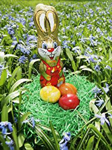 Обои Праздники Пасха Кролики Сладости Яйцами