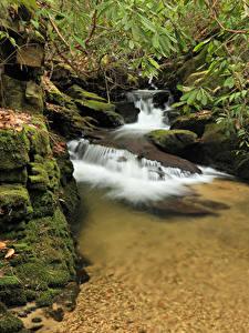 Фото США Водопады Камень Мха South Carolina