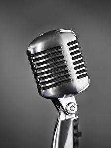 Фотография Вблизи Микрофоны Серебряный Серый фон