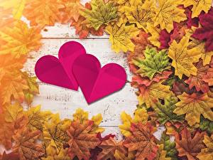 Обои День всех влюблённых Осенние Сердечко Листва Клёна