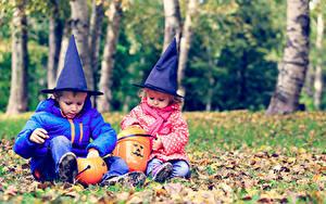 Фотография Праздники Хэллоуин Тыква Две Мальчики Девочки Шляпа Сидя ребёнок
