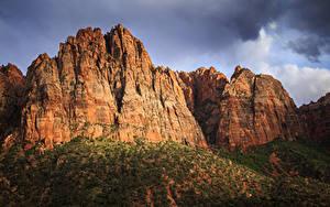 Фотографии Зайон национальнай парк США Парки Утес Природа