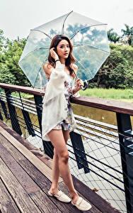 Фото Азиатки Мост Позирует Шатенка Зонтом Взгляд молодые женщины