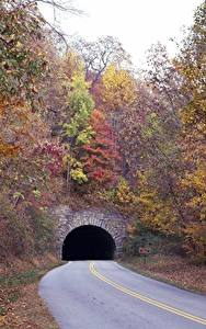 Картинка Осень Дороги Деревья Туннель