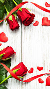 Картинка Розы Доски Красные Сердце Ленточка цветок