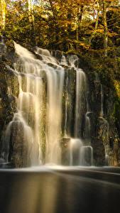 Фотографии Водопады Осенние Скала Мха Дерево Природа