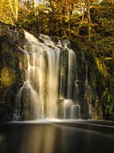 Фотографии Водопады Осенние Скала Мох Деревья Природа