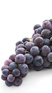 Фото Виноград Белым фоном Продукты питания