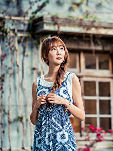 Фотографии Азиатки Платье Руки Косы Боке Шатенки девушка