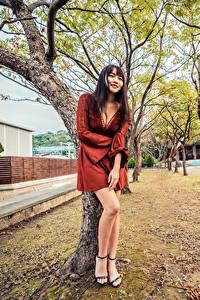Фотографии Азиатки Дерево Платья Ног Вырез на платье Улыбается