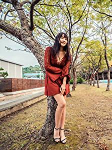 Фотографии Азиатки Дерево Платья Ног Вырез на платье Улыбается девушка