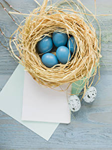 Картинки Пасха Яйцами Гнездо Лист бумаги