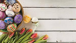 Картинка Праздники Пасха Тюльпаны Доски Яйца Дизайн Цветы