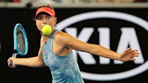 Фото Теннис Мария Шарапова Мячик Рука Australia Open 2019 спортивный Девушки