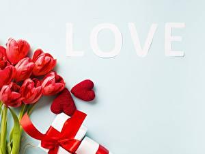 Картинка Тюльпаны Любовь День святого Валентина цветок