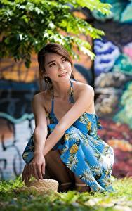 Фотография Азиатки Траве Шляпы Размытый фон Платье Шатенка Сидит девушка