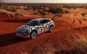 Фото Audi Пустыня Универсал 2018 E-Tron Prototype Автомобили