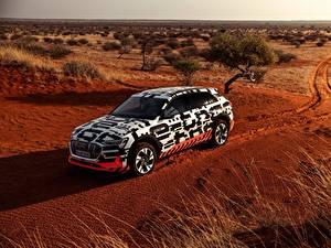 Фото Audi Пустыни Универсал 2018 E-Tron Prototype