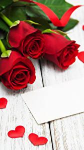 Фотографии Роза Доски Красные Сердце Ленточка Цветы