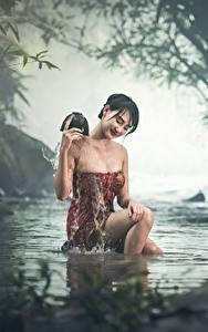 Фотография Азиаты Ручей Сидя Тумане Мокрые Брюнетки Девушки
