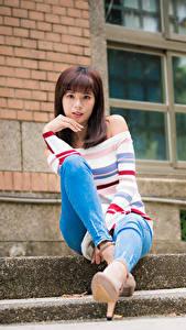 Обои Азиатки Сидящие Джинсов Свитере Шатенки Смотрит девушка