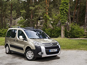 Картинка Citroen Металлик 2008-12 Berlingo XTR Multispace Автомобили