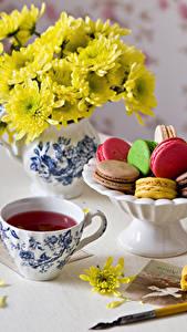 Фотографии Натюрморт Чай Хризантемы Макарон Чашка Продукты питания