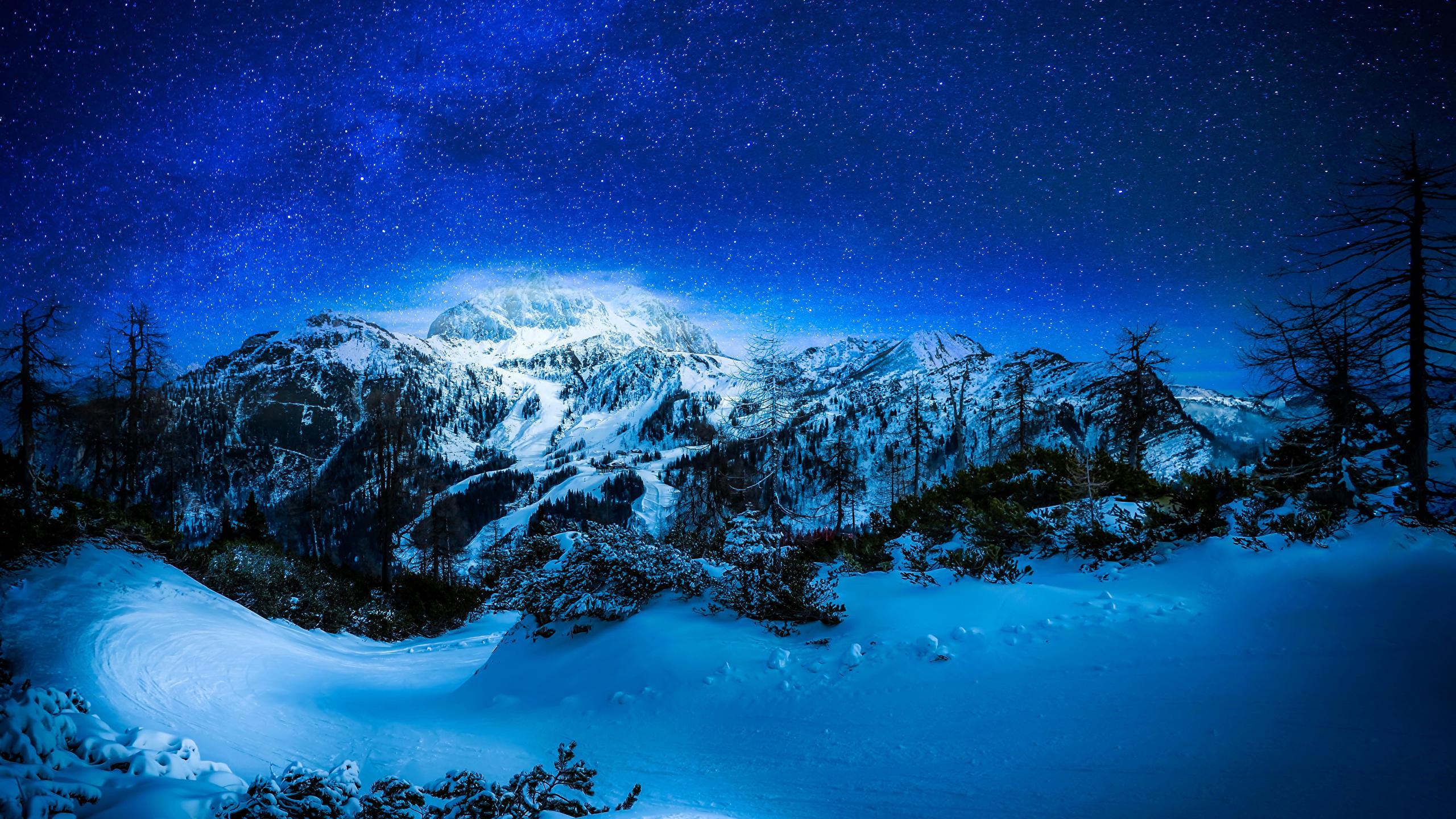 природа небо звезда снег зима деревья без смс
