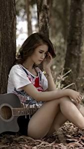 Картинка Азиаты Сидящие Гитара Ствол дерева Красивый Ног молодая женщина