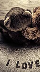 Обои Мишки Любовь Сахарная пудра Двое