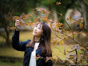 Фотографии Азиаты Размытый фон Улыбка На ветке Листья Девушки