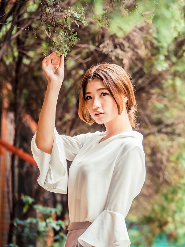 Фотография Листья шатенки Блузка молодая женщина азиатки рука на ветке 600x800 для мобильного телефона лист Листва Шатенка девушка Девушки молодые женщины Азиаты азиатка Руки ветвь ветка Ветки