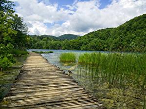 Фотография Хорватия Парк Озеро Горы Лес Мост Plitvice Lakes National Park