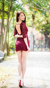 Фотография Азиатки Вид сзади Ног Платья Шатенки Красивая девушка
