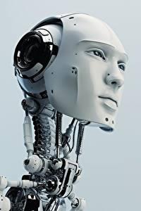 Картинки Робот Голова Серый фон Лицо Смотрит Природа