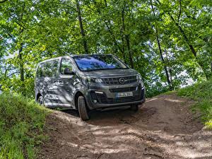 Фотографии Opel Минивэн Серая Металлик 2019 Zafira Life 4×4 машина