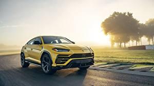 Фотография Ламборгини Желтая CUV Urus 2019 авто