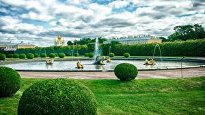Картинки Россия Санкт-Петербург Парки Фонтаны Дизайна Кусты Газоне Petergof Природа