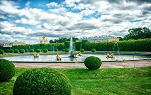 Картинки Россия Санкт-Петербург Парки Фонтаны Дизайна Кусты Газон Petergof Природа