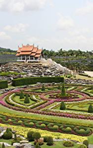 Фотография Таиланд Сады Газон Дизайн Кусты Nong Nooch Tropical Botanical Garden Природа
