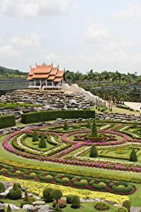Фотография Таиланд Сады Газон Дизайн Кусты Nong Nooch Tropical Botanical Garden