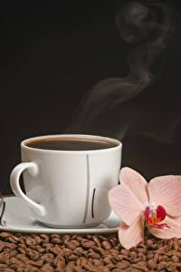 Обои Кофе Орхидеи На черном фоне Чашка Зерно Пар Пища