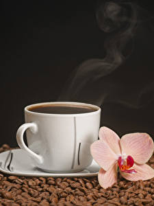 Обои Кофе Орхидеи Черный фон Чашка Зерно Пар Пища