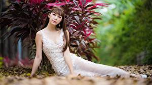 Картинка Азиаты Боке Взгляд Платье Шатенка Поза молодые женщины